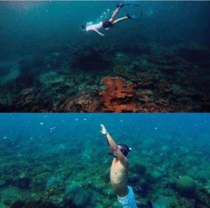 3 snorkel